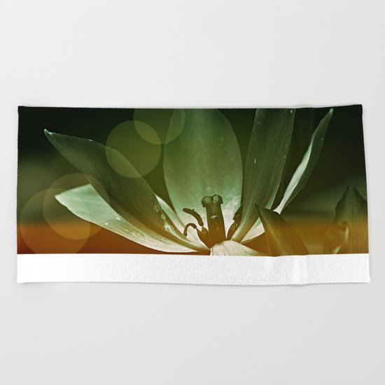 #80 Beach Towel