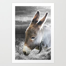 L'âne Art Print