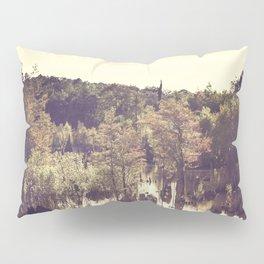 Dead Lakes With A Vintage Twist  Pillow Sham