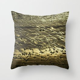 Golden Sand. Throw Pillow