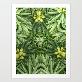 Celtic Yuletime Art Print