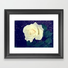 Secret Garden   Pure White Framed Art Print