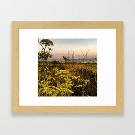 Blooms in the Salt Flats in Big Sur Framed Art Print