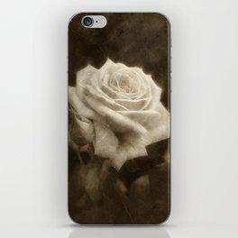 Pink Roses in Anzures 3 Antiqued iPhone Skin