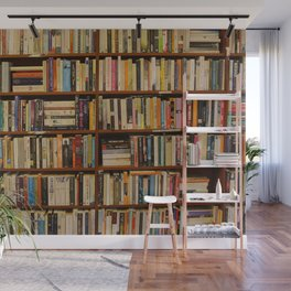 Bookshelf Books Library Bookworm Reading Wall Mural