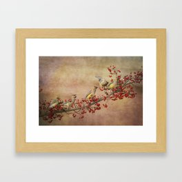 Cedar Waxwings Gathering Framed Art Print