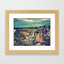 Viñedos y cabaña Framed Art Print