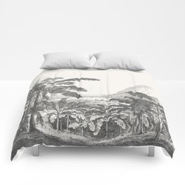 Palms and Mountain Comforters