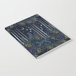 Midnight Exploration Notebook