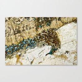 Dolerite 01 - Seahorse Canvas Print