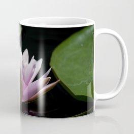 Longwood Gardens - Spring Series 282 Coffee Mug