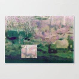 Experimental Photography#4 Canvas Print