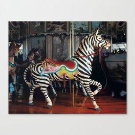 Outside Row Zebra Canvas Print