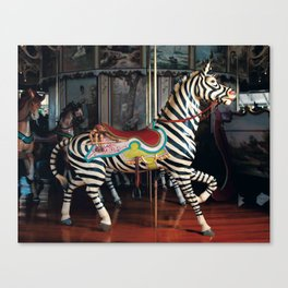 Outside Row Zebra Canvas Print