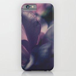 Sakura - Close Up - Four - Pink Cherry Blossom iPhone Case
