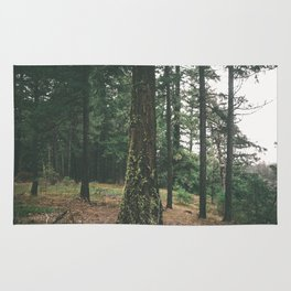 Forest XXIX Rug