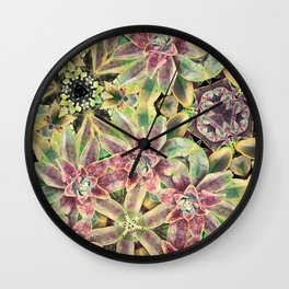 Green and Pink Succulent Wall Clock