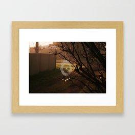 jewelled web Framed Art Print