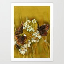 Summery Butterflies on Gold Art Print