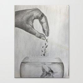 Here Fishy Fishy Canvas Print