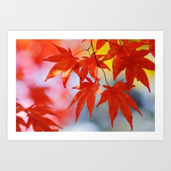 Vibrant Fall Art Print