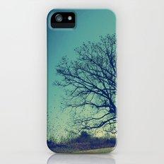 The Bird Tree iPhone (5, 5s) Slim Case