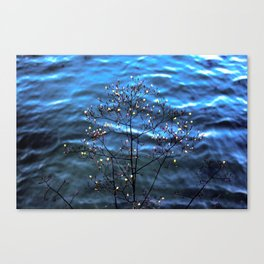 by the ocean Canvas Print
