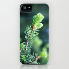 Spruce branch in spring. iPhone Case