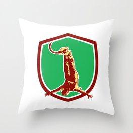 Bungy Jumping Retro Shield Throw Pillow