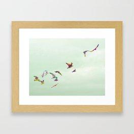Freedom in Flight Framed Art Print
