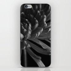 Secret Light no.1 iPhone & iPod Skin