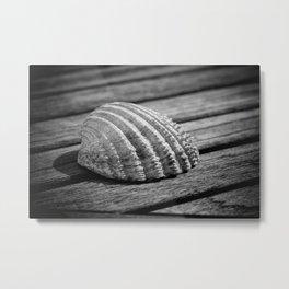Half a sea shell on wood Metal Print
