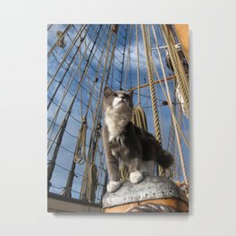 Ship Cat Ditty Metal Print