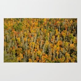 Autumn Leaves and Hemlock * Linville Rug