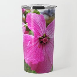 Lavatera flower with water drops in the morning Travel Mug