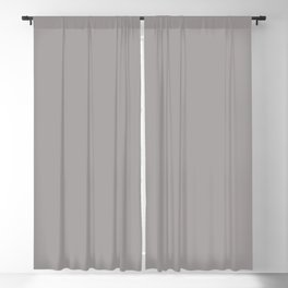 Light Gray - Silver - Aluminum Grey Solid Color Parable to Pantone Opal Gray 16-3801 Blackout Curtain
