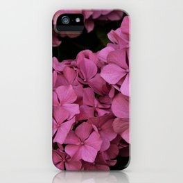 Pink hydrangea flowers iPhone Case