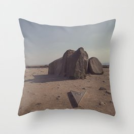 North + South Throw Pillow
