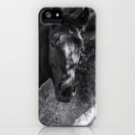 Mica and Malpais BW - Pryor Mustangs iPhone Case