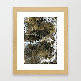 Team Splash, Black and Gold Framed Art Print