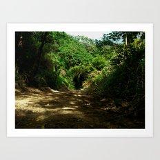Outdoors @ Rincon Puerto Rico Art Print