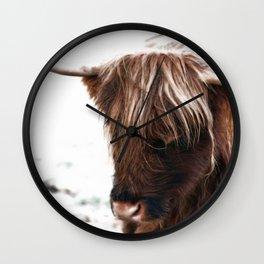 Scottish highland cattle Wall Clock