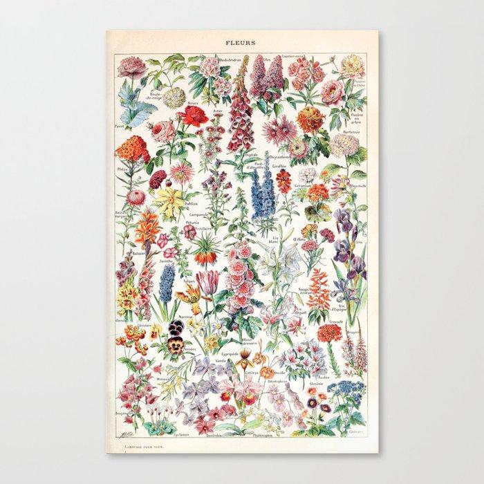 Adolphe Millot - Fleurs pour tous - French vintage poster Leinwanddruck