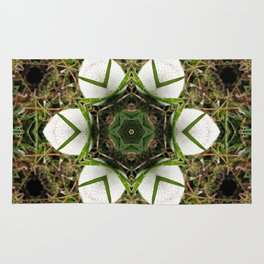 Kaleidoscope of puffball fungus Rug