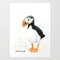 puffin Art Prints featuring Puffin by Priscilla George