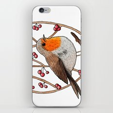 Christmas winter robin iPhone & iPod Skin