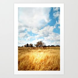 the homestead. Art Print