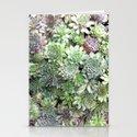 Desert Flower I by drmartin