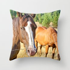 Country Livin' Throw Pillow
