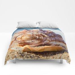 Hawaii Gentle Breeze Comforters